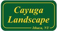 Cayuga Landscape, Ithaca NY