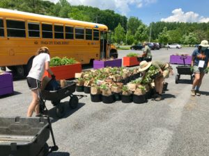 Growing Together: Container Garden Kits to students throughout Tompkins County